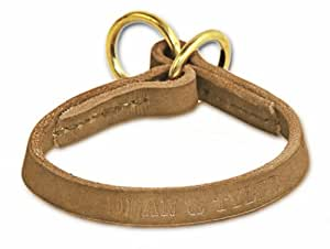 """Dean and Tyler """"TRANQUILITY"""", Leather Dog Choke Collar with Solid Brass Hardware - Tan - Size 18-Inch by 1/2-Inch - Fits Neck 16-Inch to 18-Inch"""
