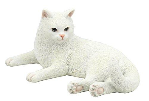 - Unicorn Studio British Shorthair White Cat