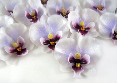 100-Small-White-Purple-Phalaenopsis-Orchid-Silk-Flower-Heads-2-Artificial-Flowers-Heads-Fabric-Floral-Supplies-Wholesale-Lot-for-Wedding-Flowers-Accessories-Make-Bridal-Hair-Clips-Headbands-Dress