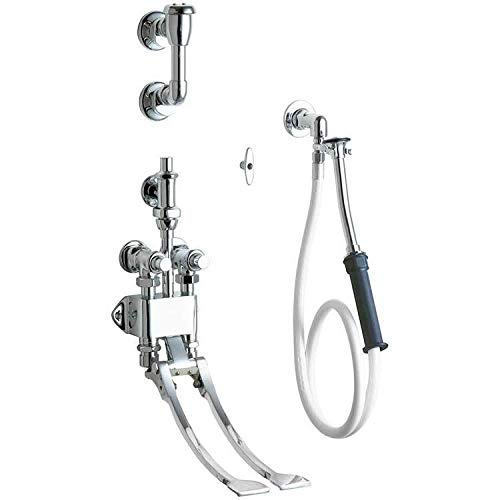 Chicago Faucets 910-G777-19KCP Healthcare Faucets and Fittings - Bed Pan Cleaners, Chrome