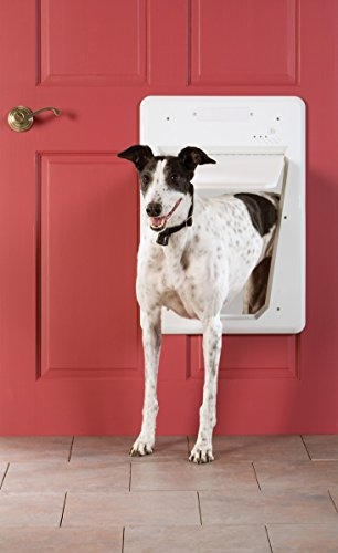 PetSafe Electronic SmartDoor, Automatic Dog and Cat Door, Large, Collar Activated with SmartKey