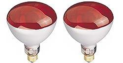 Westinghouse R40 250 Watt Red E26 (Medium) Base Incandescent Reflector Light Bulb - 2 Pack