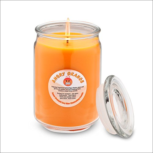 ANGRY ORANGE Odor Eliminating Soy Candle from...