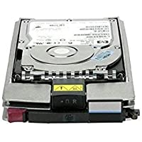 HP 411261-001 - HP 300 GB SCSI 15K ULTRA 320 HARD DRIVE