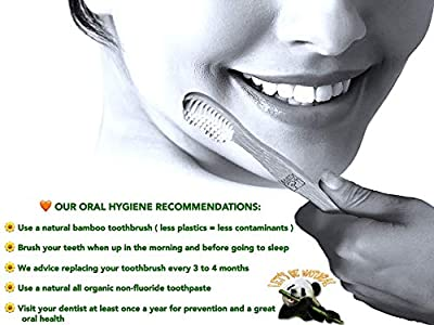 Organic Bamboo Toothbrushes Eco-Friendly, Biodegradable and Natural all Premium Vegan Wooden Toothbrush with Durable Medium Soft BPA-Free White Bristles for Sensitive Gums. Mayan Symbols