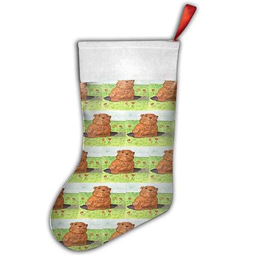 KSSChr Groundhog Day Christmas Stocking,Craft Holiday Hanging Socks Ornaments Decorations Santa Stockings]()