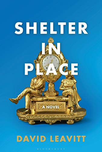 Book Cover: Shelter in Place