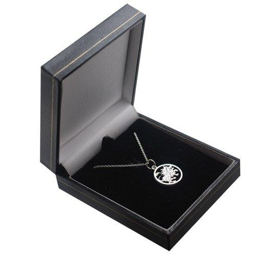 Argent - Pendentif de 11mm de diamètre. Signe zodiaque Lion. Fourni avec une chaine brillante.