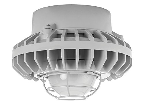 RAB Lighting HAZPLED42F-G HAZLED 42W Cool LED Pendant with Frosted Globe and Wire Guard, 5100 K, Gray by RAB Lighting