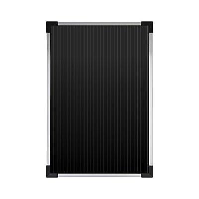 Coleman 58025 10W Amorphous Solar panel: Automotive