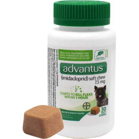 Bayer Advantus Oral Flea Soft Chews for Small Dogs (30 Count)