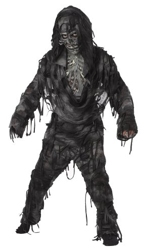 Zombie Halloween Costume (California Costumes Toys Rotten to The Core, Large)