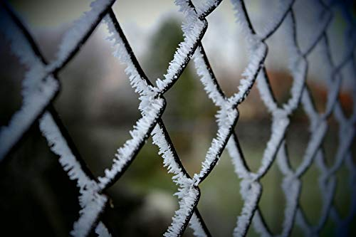 Home Comforts Peel-n-Stick Poster of Detail Iron Frost Fence Cold Vivid Imagery Poster 24 x 16 Adhesive Sticker Poster Print