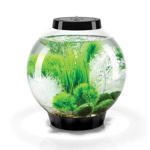 biOrb Classic 15 Liter Black Aquarium with LED and Grass Field Décor Package