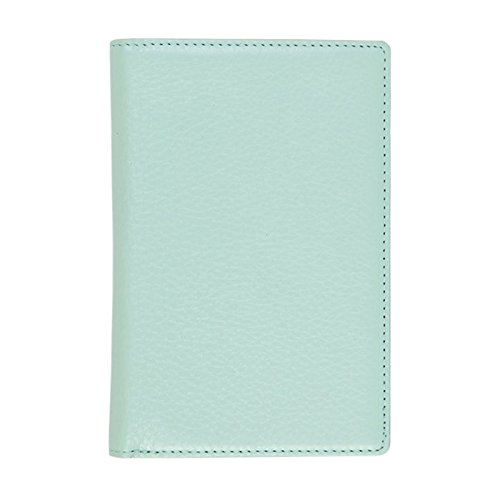 Blocking Passport Case No Skimming Currency Wallet Sky Blue (Leather Multi Currency Passport Case)