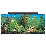 SeaClear 30 gal Show Acrylic Aquarium Combo Set