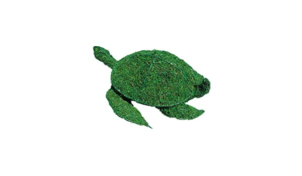 Amazon.com : Sea Turtle 6 inches high x 15 inches long x 10 inches ...