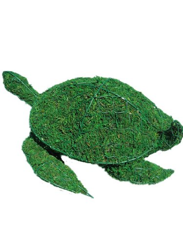 Sea Turtle 6 inches high x 15 inches long x 10 inches wide w/ Moss Topiary Frame , Handmade Animal Decoration