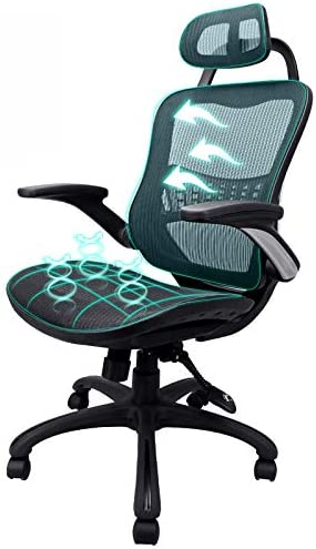 Komene Ergonomic Office Chair High Adjustable Back Mesh Desk Chairs,Computer Chair Lumbar Support Modern Executive