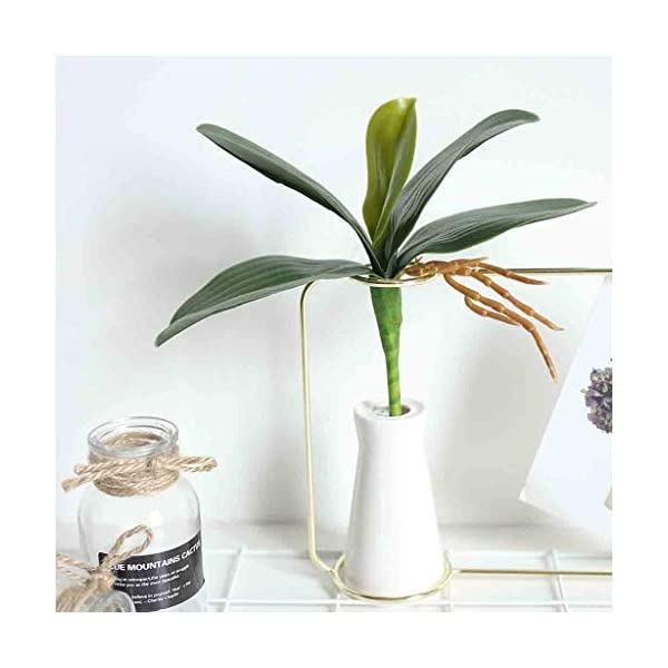 Fine-Phalaenopsis-Artificial-Flower-Simulation-Leaves-Potted-Plant-Leaf-Butterfly-Orchid-Bonsai-with-Ceramic-Vase-Wedding-Party-Home-Centerpiece-Decor-Green-L