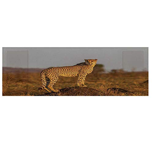 Safari Microwave Oven Cover,African Wild Animal Cheetah Standing on Termite Mound Savannah Nature View Decorative Cover for Kitchen,36