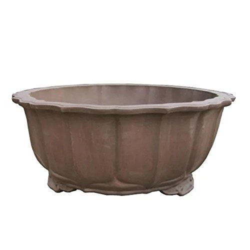 Carving-painting Grey-brown Purple Clay Water-caltrop-flower Round-basin-flange Type Floor Flowerpot by Sungao