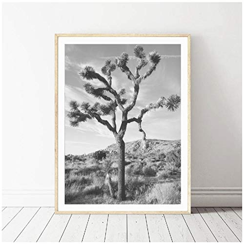 dayanzai Joshua Tree Wall Art Poster Desert Prints, Black and White Joshua Tree Photography Canvas Painting Picture Home Wall Art Decor 50X70Cm No Frame