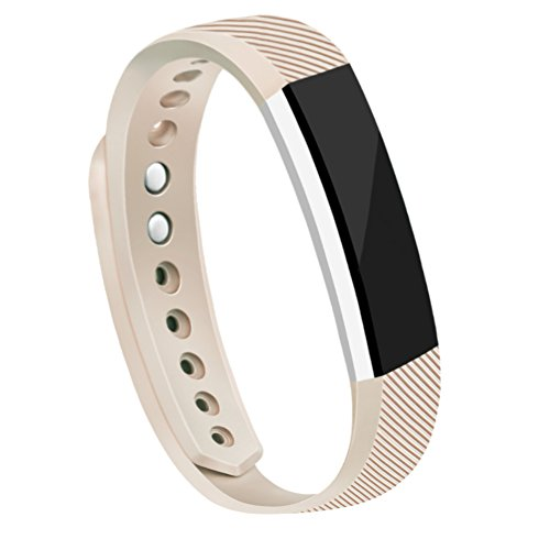Fitbit Bands AK Replacement Metal