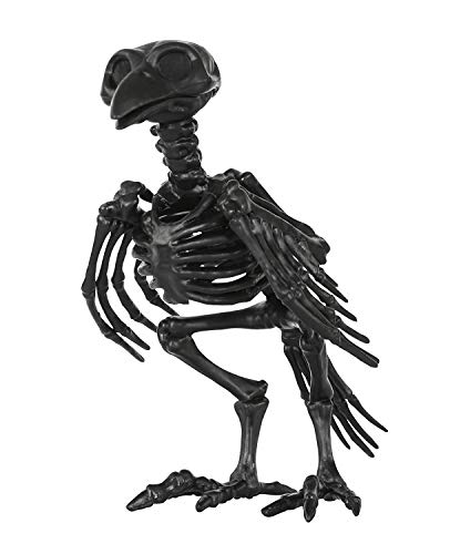 1 Pack, Fantasy Bone Skeleton Crow Raven Animal Skeleton Bones for Horror Halloween Decoration ()