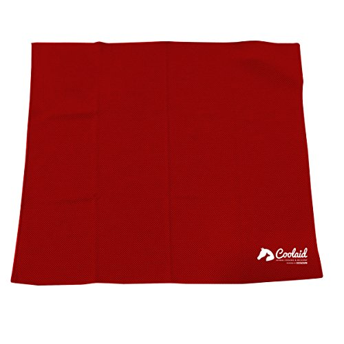 Coolaid Canine Cooling Large Dog Bandana - 24