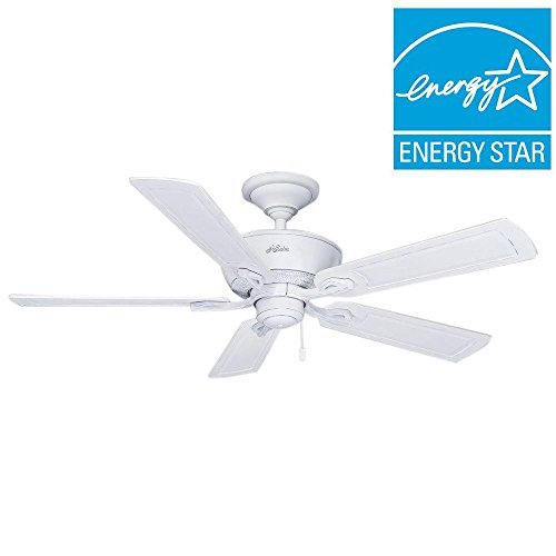 Hunter Caicos 52 In. Cottage White Wet Rated Ceiling Fan