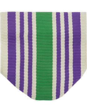 RC-D104, Perfect Attendance Drape (N-1-4) ROTC INSIGNIA