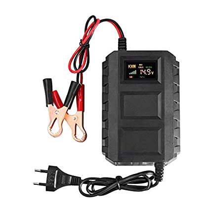 Jullyelegant Cargador de batería Inteligente de 12V Pantalla ...