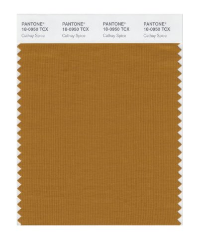 Pantone Smart Swatch 18-0950 Cathay Spice