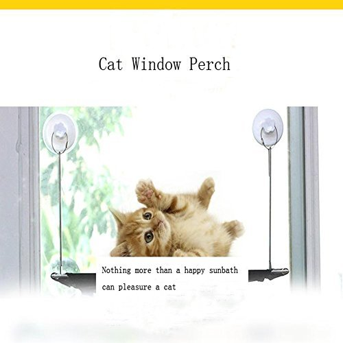 Cat Window Perch - Durable Cat Hammock For Window With 6 Patent Suction Cups Hold Up To 45lbs Safe Sunny Seat Window Mounted Cat Bed Perfect Strong Kitty Cot For Your Kitten Enjoy Sunshine