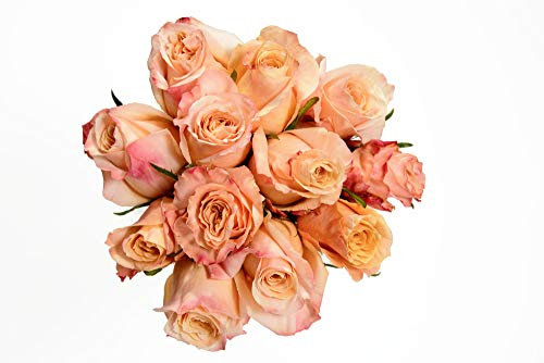 Peach Rose Bouquet (1 Dozen)
