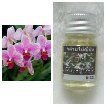 Frangipani (Leelawadee) Flower Scent (1 Piece) and Japanese Orchid Flower Scent (1 Piece) Thai Spa Aroma Pure Essential / Fragrance Oil for Spa Bath, Candle Lamp Burner, 5ml by M.G.SHOP