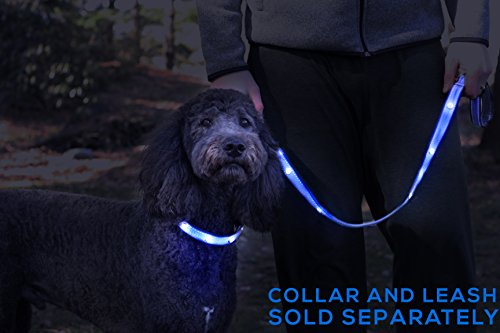 Tuff Tails LED Lightning Dog Leash - USB Rechargeable | Super Bright for Night Visibility & Safety | Durable | Waterproof | Extra Long (Blue)
