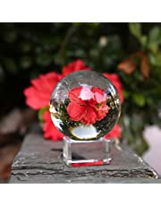 Neewer 50mm/1.97inch Clear Crystal Ball Globe with a Crystal Stand for Feng Shui/Divination or Wedding/Home/Office Decoration