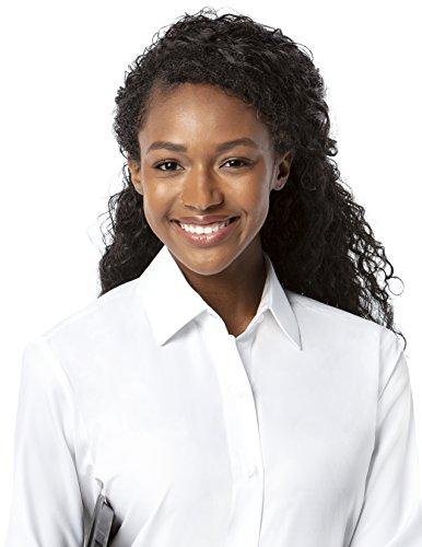 Microfiber Womens Dress - Luxe Microfiber Women's Button-Down Long Sleeve Shirt Regular Fit Spread Collar Fashion Cuff - Style Debi