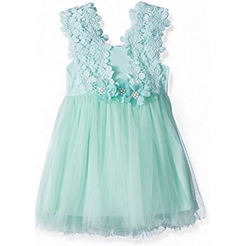 Elegant Feast Baby Girls Princess Lace Flower Tulle Tutu Gown Formal Party Dress (2-3 Years, Blue)