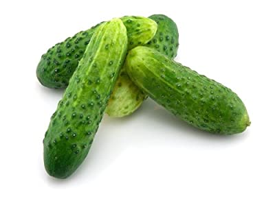 Bush Pickle - Cucumber Seeds