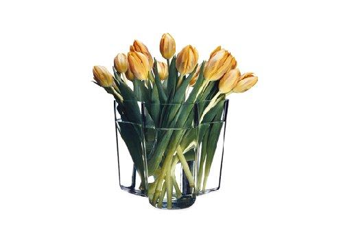 Aalto Clear Vase (iittala Aalto Vase - Clear - Medium)