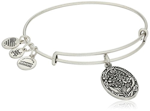 Alex and Ani Because I love you, Grandmother II Expandable Rafaelian Silver-Tone Bracelet by Alex and Ani