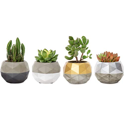 Mkono Mini Cement Succulent Planter Geometric Colorful Design Concrete Succulent Pots Modern Flower Pots Desk Plant Holder for Cactus Herb or Small Plants,Set of 4 (Plant Not Included) ()