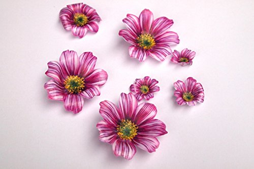 DIY 3D Edible Wafer Pre Cut Flower Edible Flowers Decoration