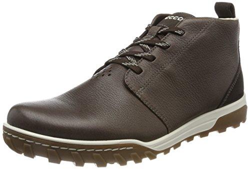 Ecco Herren Urban Lifestyle Desert Boots Braun (koffie / Drop)