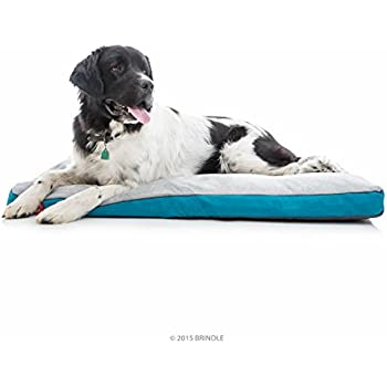 Amazon.com : BRINDLE Soft Memory Foam Dog Bed with