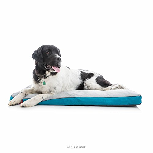 BRINDLE Soft Memory Foam Dog Bed with Removable Washable Cover - 46in x 28in - Teal