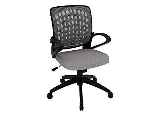 Z-Line Designs Task Chair, Grey (Task Z-line Chair Designs)